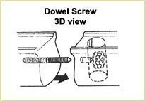 dowel screw 3D view