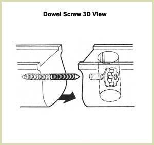 Dowel section 3D view